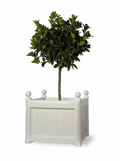Versailles Fibreglass Planter 163 95 99