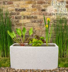 Wildlife Friendly 80cm Pond in a Trough - White Poly-Terrazzo Trough Planter