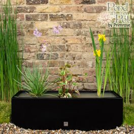 W80cm Ornamental 'Pond in a Pot' Trough Black Fibreglass Planter