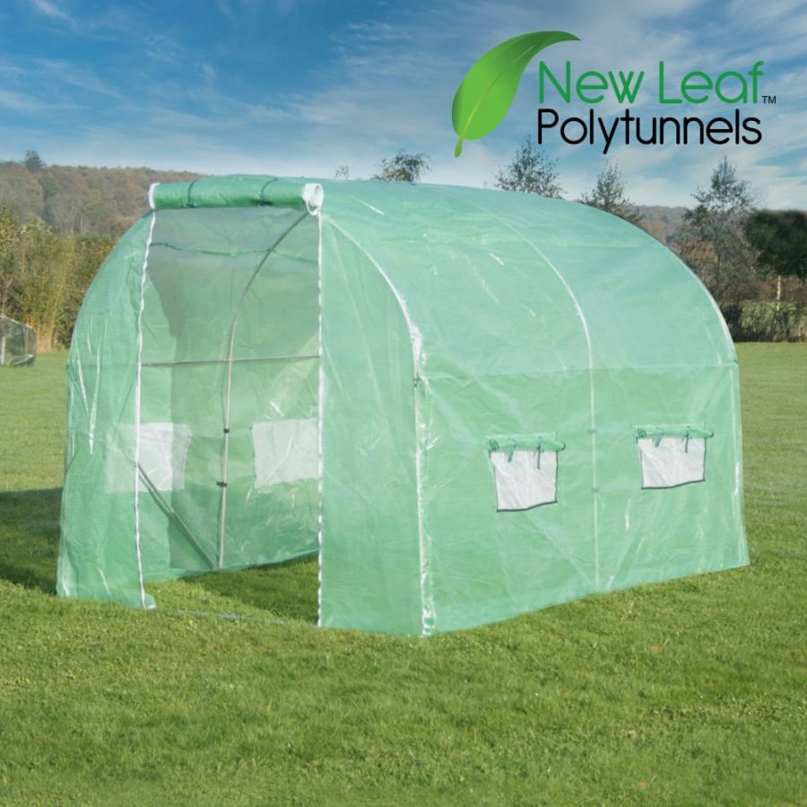 3m x 2m (9ft 10in x 6ft 7in) Premium Polytunnel Galvanised Frame by New Leaf™