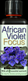 300ml African Violet Focus By Growth Technology