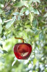 Smart Garden - Apple Shaped Hanging Glass Feeder 2 Pack