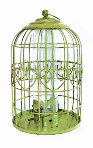 Peckish Squirrel Proof Seed Feeder for Wild Birds