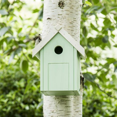Peckish Blue Tit Nest Box for Wild Birds
