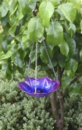 Smart Garden - Anemone Hanging Glass Bird Feeder/Bird Bath
