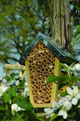 FSC Friendly Bee House - 20cm (8in)