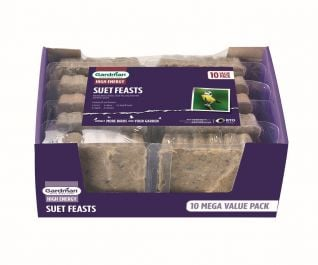 Suet Feast Bird Feed by Gardman - Pack of 10