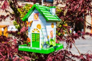 Butterfly Decorative Bird Feeder