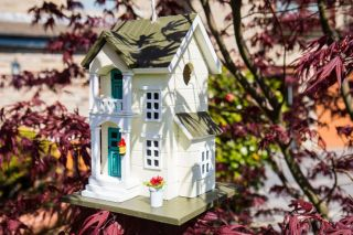 Main Street Bird House