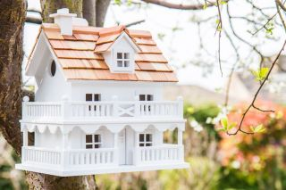 Novelty Bird House Cottage - White