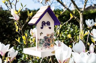Butterfly Plum Printed Fruit Bird Feeder