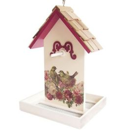 Raspberry Printed Fruit Bird Feeder