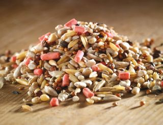 Marriage's High Energy Wild Bird Seed and Suet Mix - 13Kg