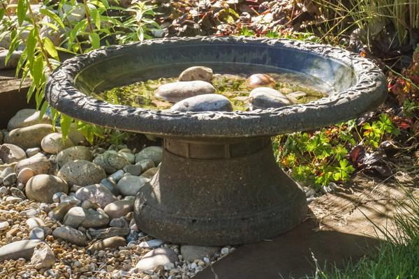 Coniston Bird Bath