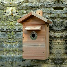 Premium Camera Nestbox with multi-use colour/infrared camera
