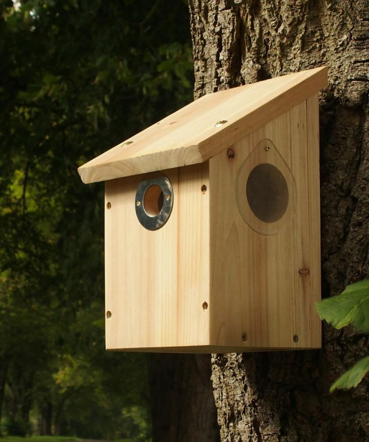 Camera Ready Nest Box with Camera Clip