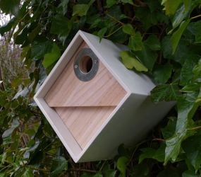Urban Bird Nest Box