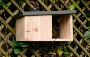 Wooden Robin Nest Box
