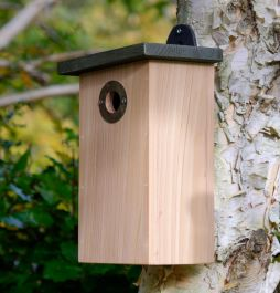 Predator Proof Bird Nest Box