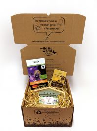 Bee Conservation Gift Box