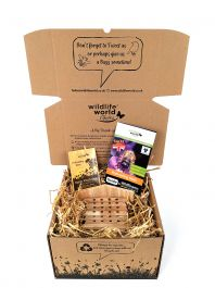 Bee Care Gift Set