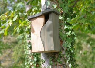 Curve Cavity Bird  Nest Box