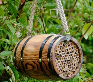 Barrel Bee Nester
