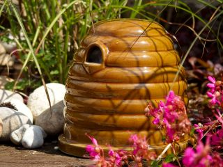 Ceramic Bee Skep Wildlife Habitat With Nesting Material