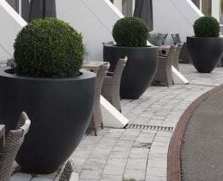 59cm Canna Fibreglass Tapered Pot In Black
