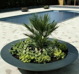 200cm Diam Ceder Fibreglass Bowl Planter In Black