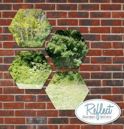 11¾in Set of 4 Small Hexagonal Silver Mirrors - by Reflect™