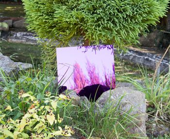 2ft x 2ft Set of 2 Small Square Purple Garden Mirrors