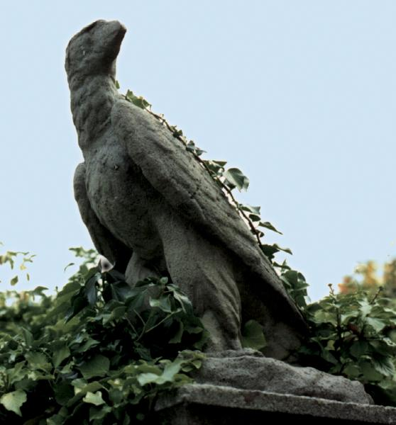 Wellington Eagle Facing Left Stone Statue
