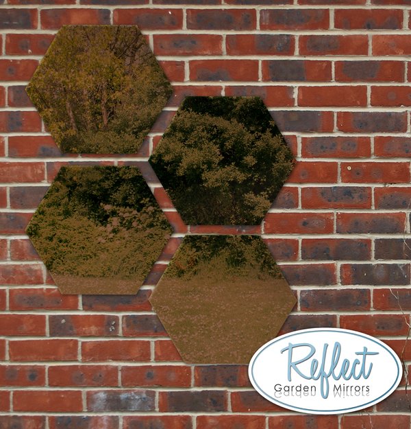 11¾in Set of 4 Small Hexagonal Bronze Mirrors - by Reflect™