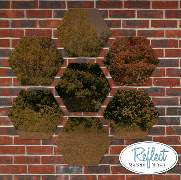 11¾in Set of 7 Small Hexagonal Bronze Mirrors - by Reflect™
