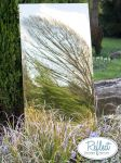 6ft x 2ft 6in Large Gold Garden Mirror - by Reflect™