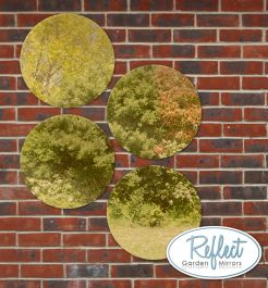 16in Set of 4 Circular Acrylic Gold Garden Mirrors - by Reflect™