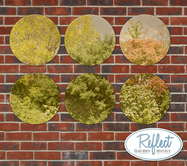16in Set of 6 Circular Acrylic Gold Garden Mirrors - by Reflect™