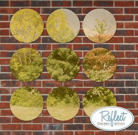 16in Set of 9 Circular Acrylic Gold Garden Mirrors - by Reflect™
