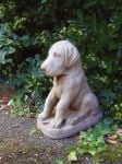 Great Dane Puppy Stone Statue