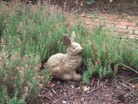 Cottontail Stone Statue