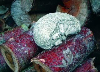 Dozing Hedgehog Stone Statue