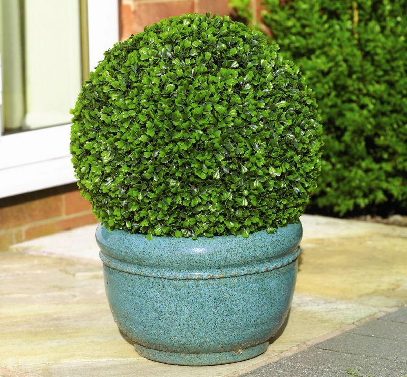 28cm Pair Of Artificial Topiary Boxwood Balls by Primrose