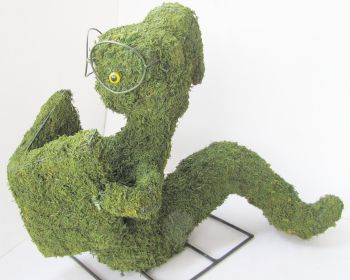 Topiary Bookworm  With Moss Filling