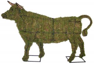 Topiary Bull With Moss Filling