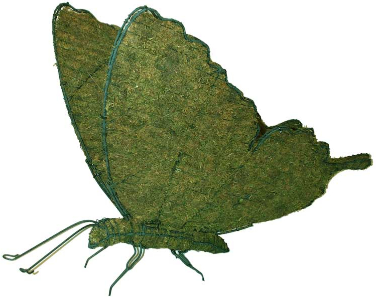 Topiary Butterfly With Moss Filling