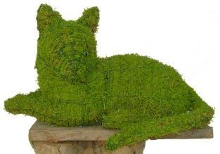 Topiary Cat lying With Moss Filling