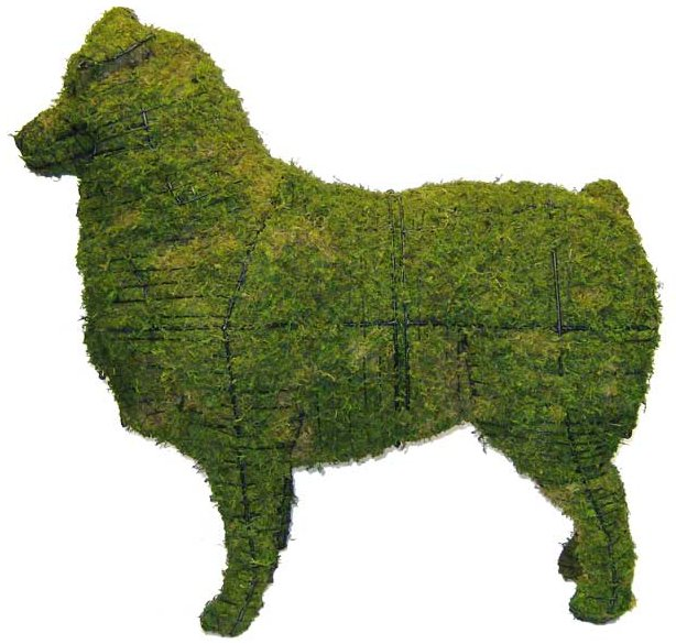 Topiary Dog Australian Shephard With Moss Filling