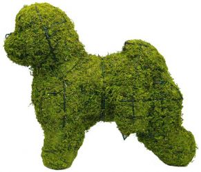 Topiary Dog Bischon Frise With Moss Filling