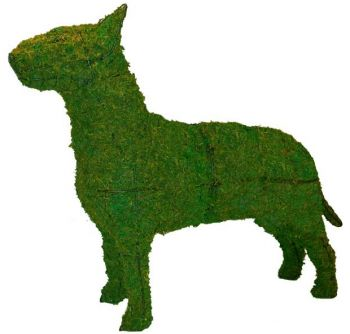 Topiary Dog Bull Terrier With Moss Filling